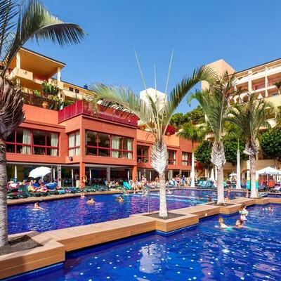 Best Jacaranda, Tenerife