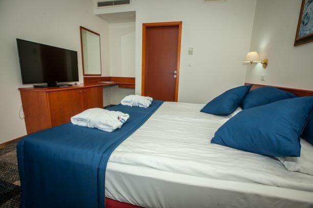 Terme Čatež, Hotel Toplice soba