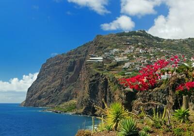 Najveća europska morska stijena Cabo Girao i cvijeće, putovanje Madeira