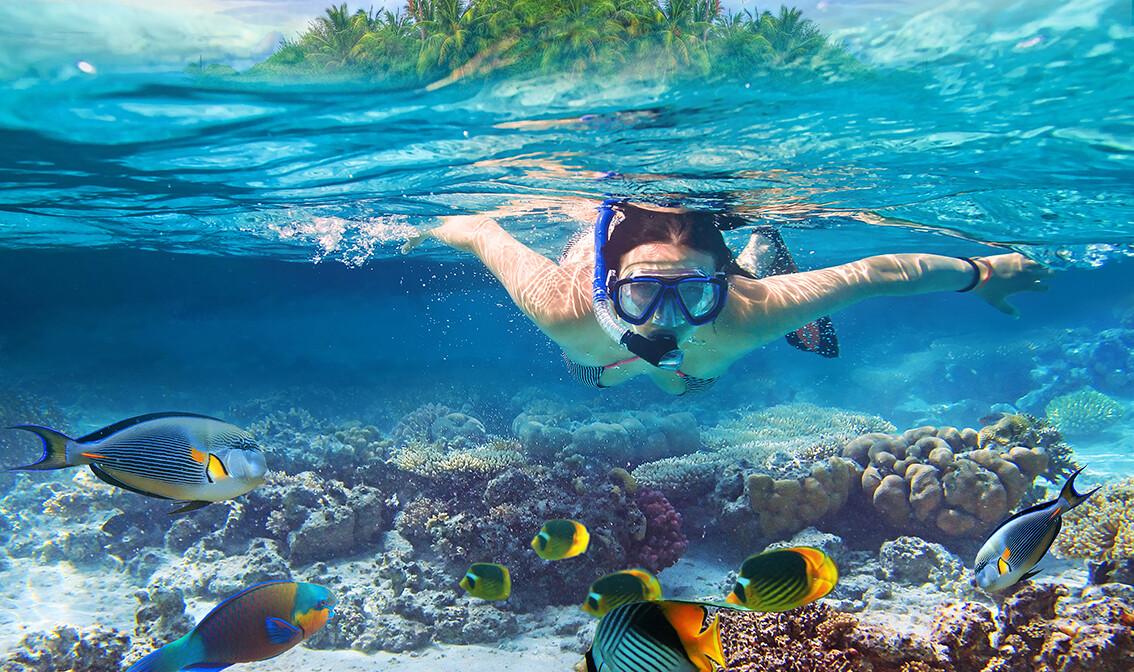 Maldivi, ronjenje oko kraljnog grebena, putovanje na Maldive, grupni polasci, daleka putovanja