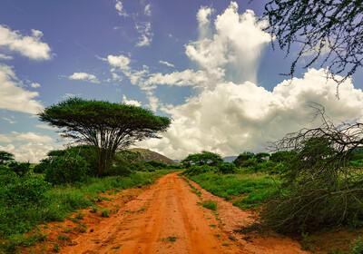 Kenija, Istočni Tsavo