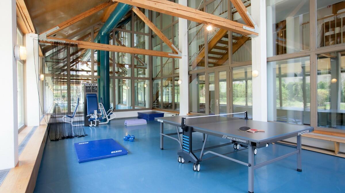 Skijanje i wellness u Sloveniji, Bohinj Hotel Jezero, teretana u hotelu