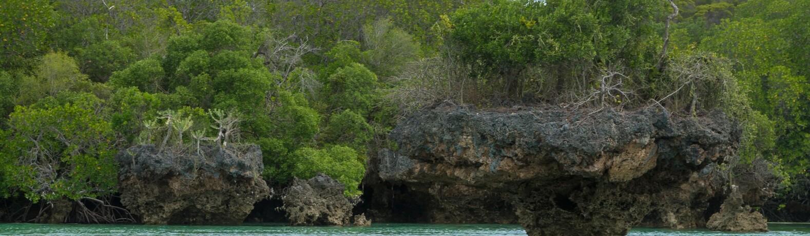 Menai Bay