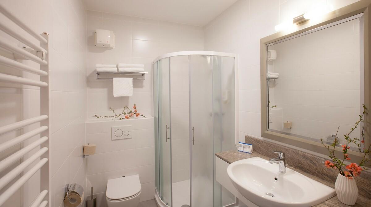 Skijanje i wellness u Sloveniji, Bohinj Hotel Jezero, izgled kupaonice u sobi