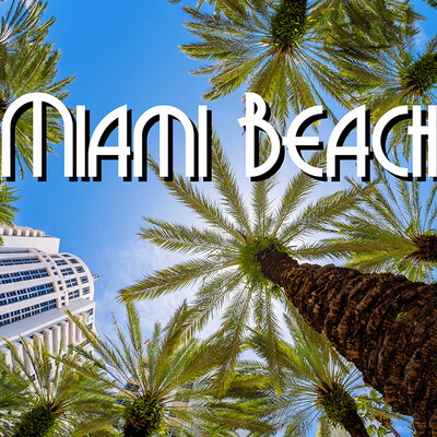 Palme na Miami beach, putovanje Florida, daleka putovanja, garantirani polasci