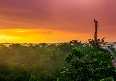 Brazil putovanje, daleka putovanja, grupni polasci, ture po južnoj Americi mondo