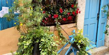 Rovinj, ulica Grisia, mondo travel , garantirani polasci