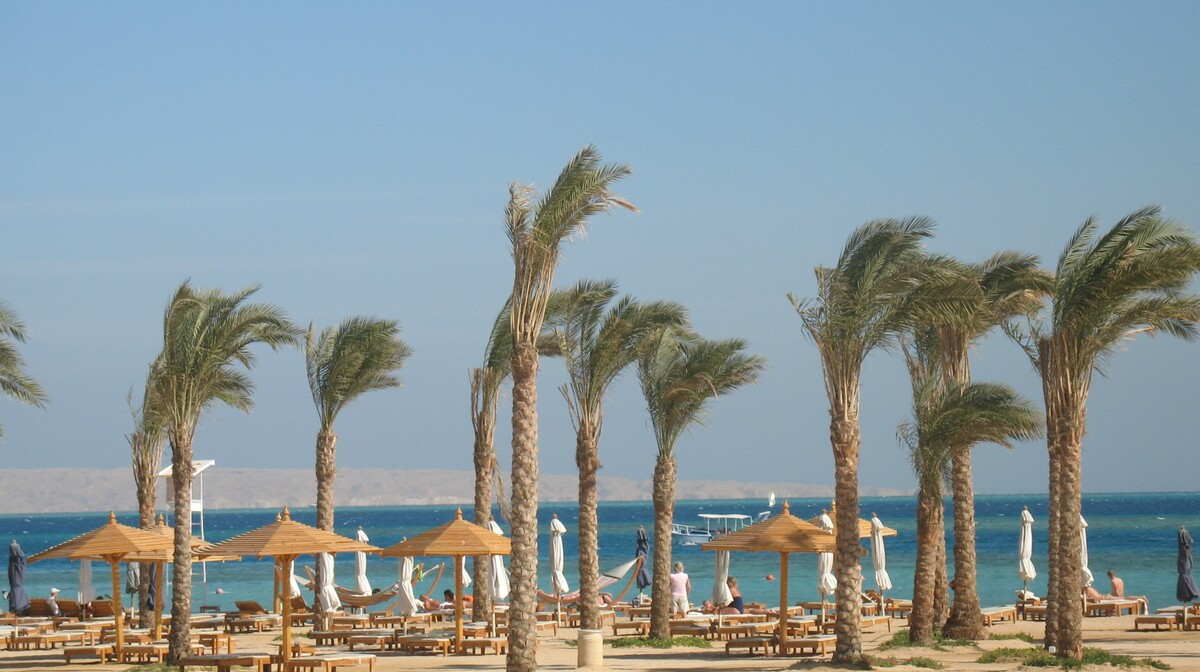 Hurgada, Hotel Steigenberger Al Dau Beach resort