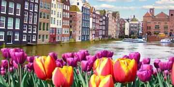 Tulipani i pročelja starih zgrada uz kanal, putovanje u Amsterdam