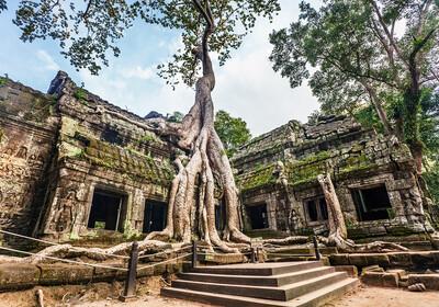 Kambodža, Angkor, Hram Ta Prohm