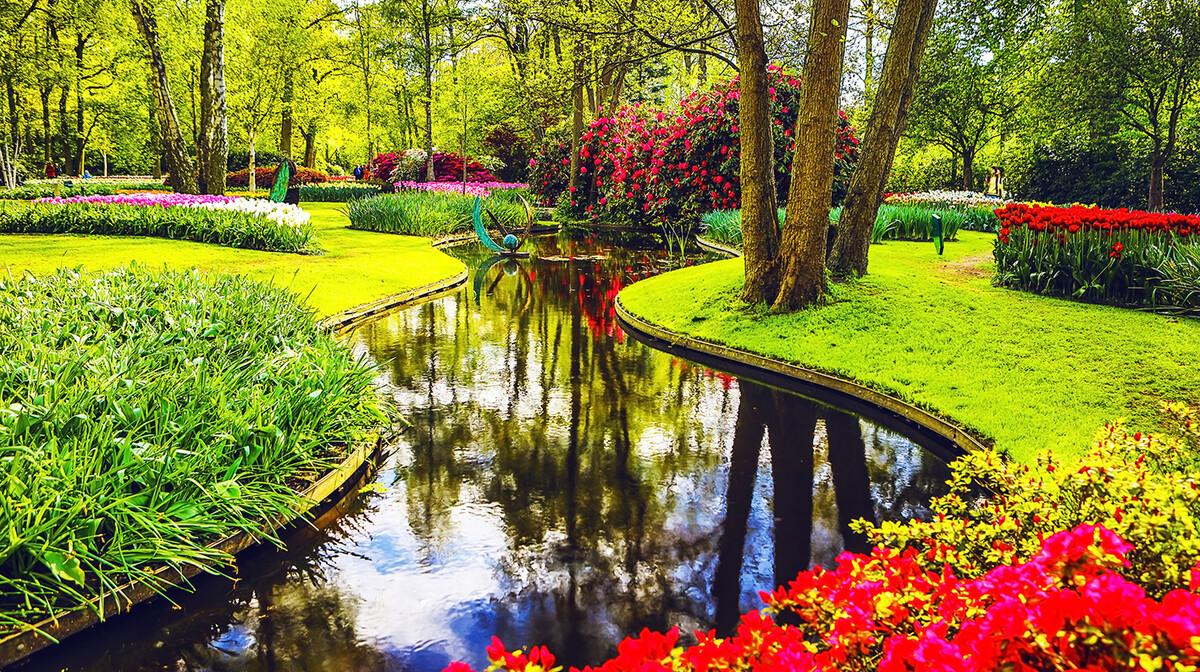 Polja tulipana u Nizozemskoj, putoavnje u Amsterdam i Keukenhof