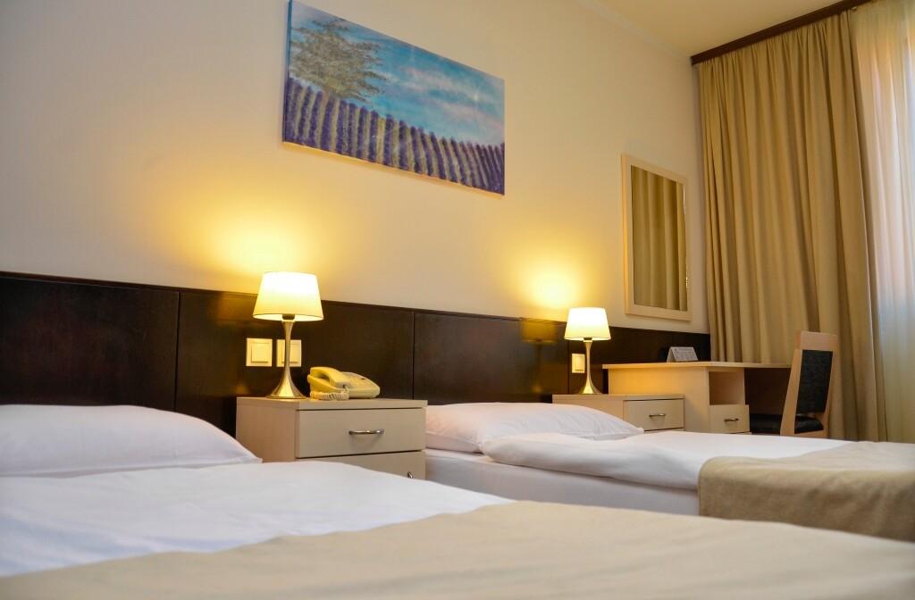 Daruvarske toplice, Lječilišni hotel Termal