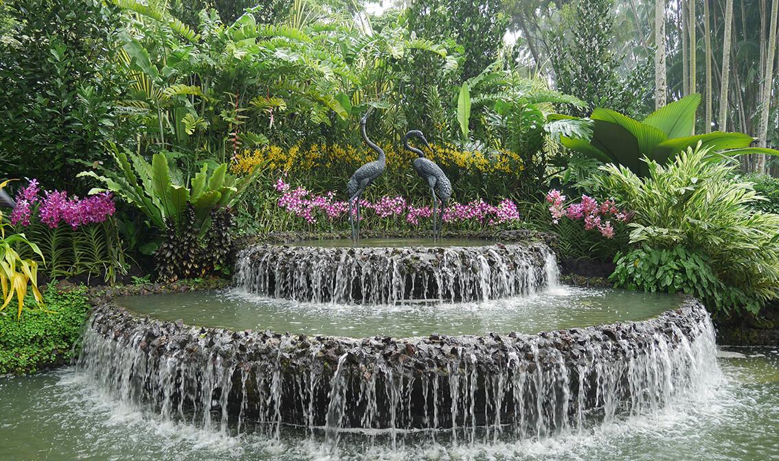Fontana u singapurskom botaničkom vrtu, putovanje Singapur, daleka putovanja
