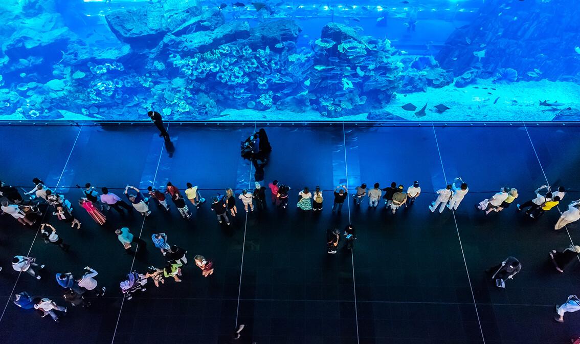 Dubai,  najveći akvarij na svijetu, garantirani polasci, daleko putovanje zrakoplovom