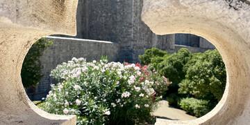 Dubrovnik, Rozeta , upoznajmo Hrvatsku , mondo travel, autobusna putovanja