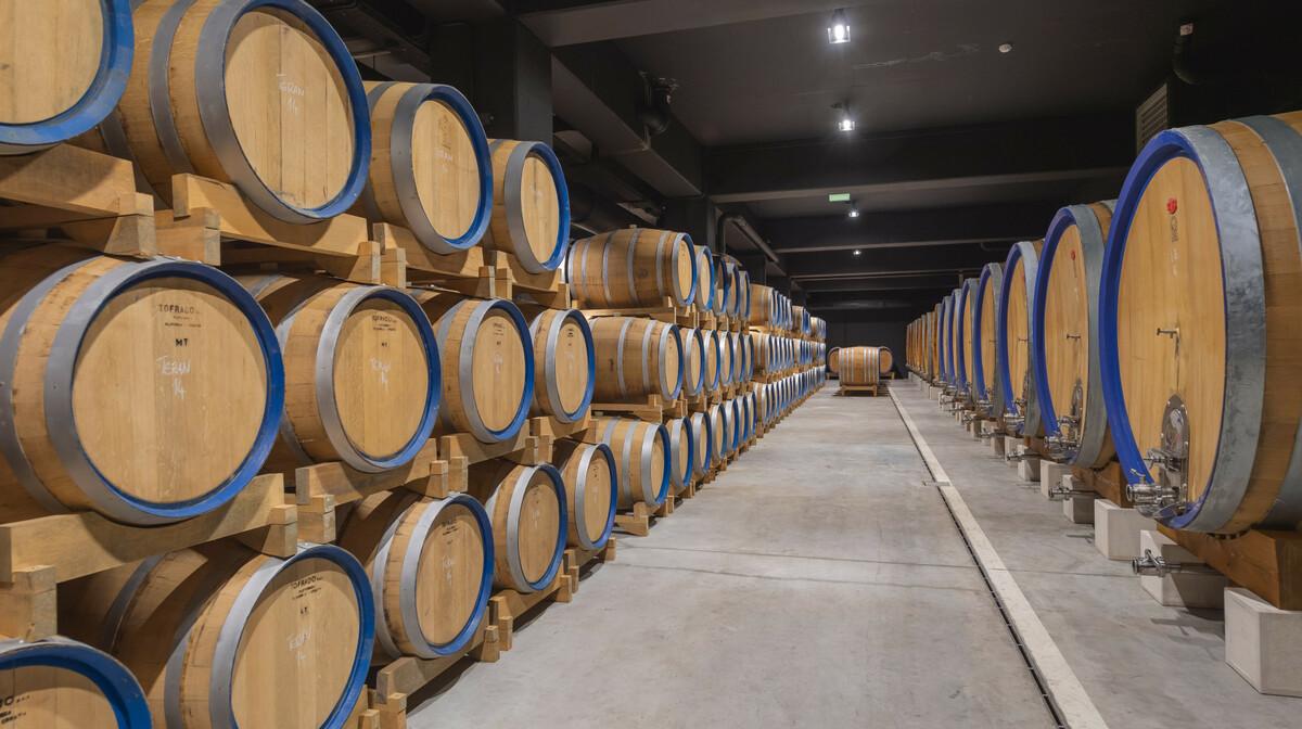 Wine and Heritage Hotel Roxanich - Motovun, vinarija