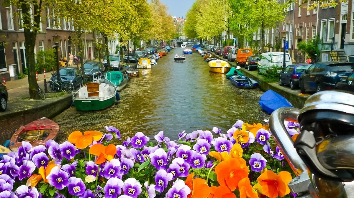 Amsterdamski kanal i cvijeće, putovanje Proljeće u Amsterdamu mondo travel