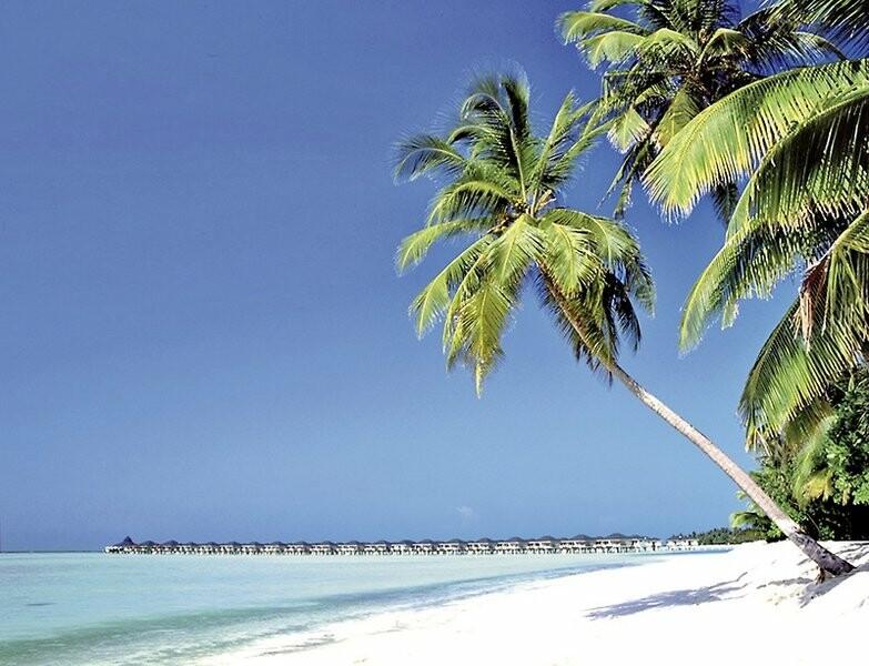 Maldivi, Sun Island Resort & Spa