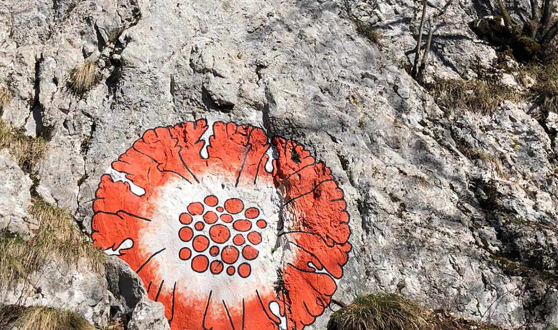 Crvena oznaka na kamenu, Land Art staza, Učka, autobususna putovanja, jednodnevni izlet