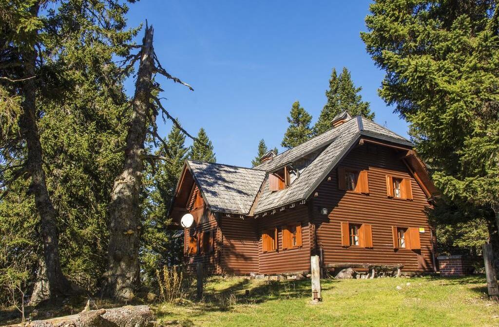 Skijanje Krvavec Apartmani Muštrinka, zimska kućica za odmor,u šumi među borovima