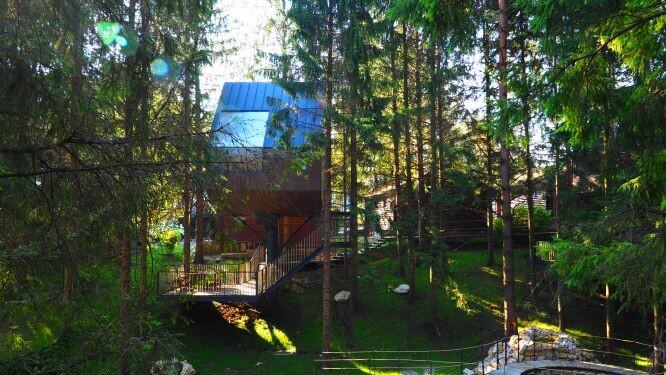 Kucice na drvetu, panorama 2