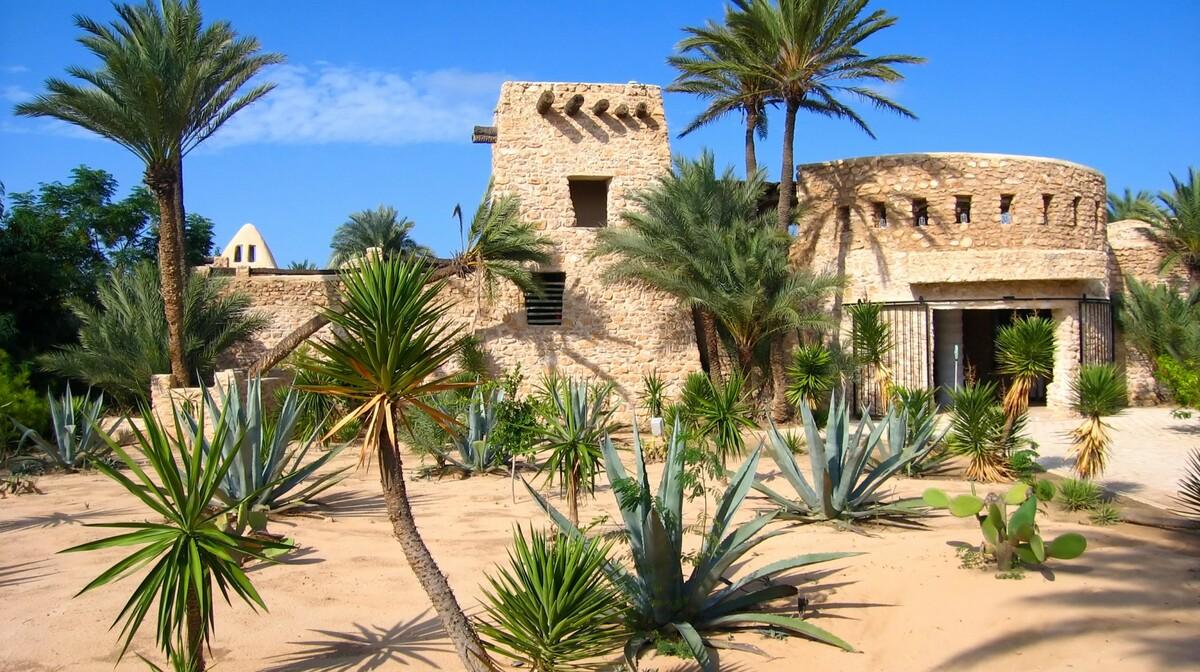 Farma krokodila, Djerba, Tunis, ljetovanje Mediteran, charter let Tunis, garantirani polasci