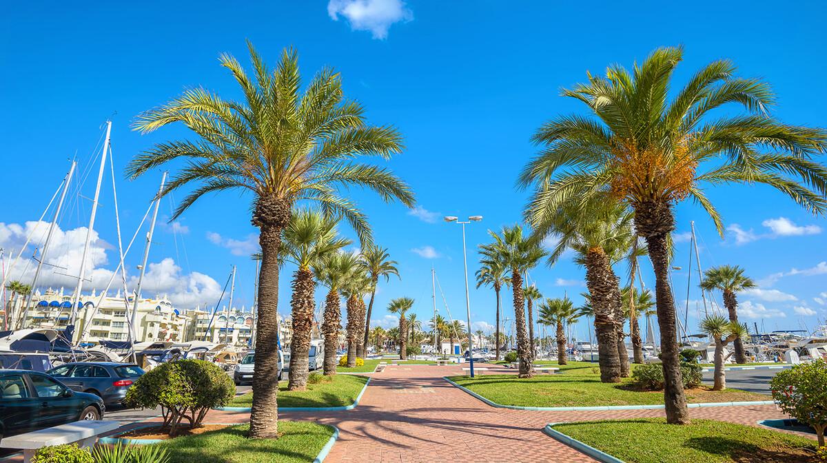 Šetalište sa palmama u Malagi, putovanje Andaluzija