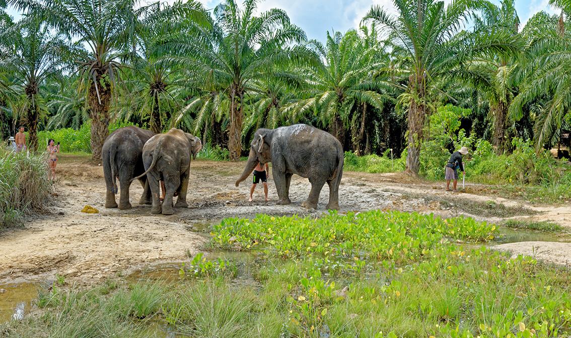 Tajland, mondo travel, garantirani polasci
