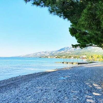 Starigrad-Paklenica, Bluesun camp paklenica, borova šuma uz plažu