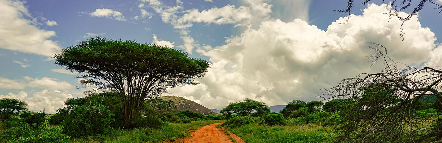 Istočni Tsavo