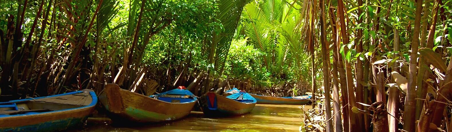 Delta Mekonga